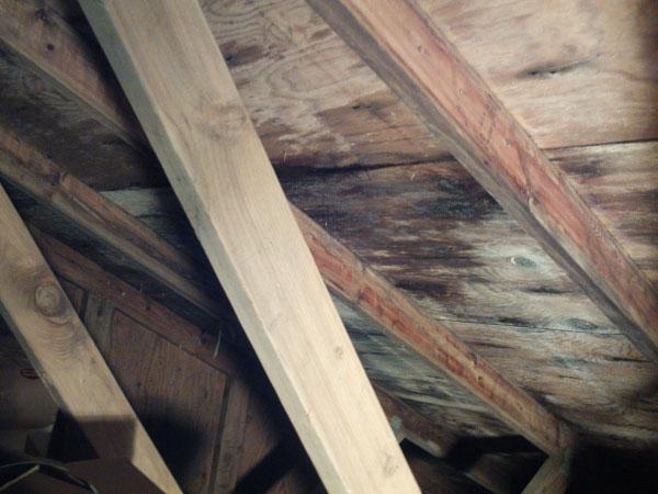 отсырение деревянных конструкций кровли