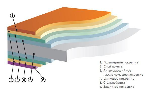 Послойная структура листа